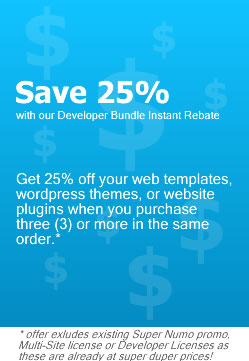 Save on Web Templates and WordPress Themes